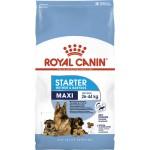 Royal Canin Maxi Starter 1 кг