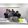 Тайские врачи спасли черепаху, у которой в желудке была почти тысяча монет