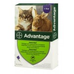 Адвантейдж для кошек более 4 кг, 0,8 мл, 4 пипетки
