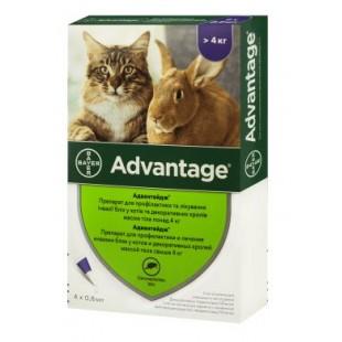 Адвантейдж для кошек более 4 кг, 0,8 мл,