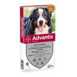 Адвантикс XXL 40-60 кг, 6 мл, 4 пипетки